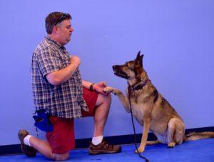 dog trainer school, az dog smart academy