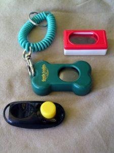 clicker training, dog training career, az dog smart academy, school for dog trainers