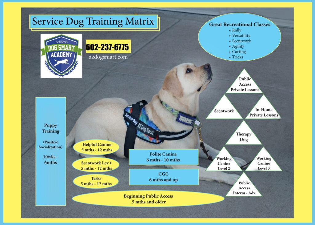 service dog, service dog training, service dog classes, az dog sports
